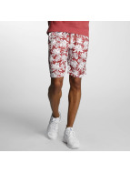 Nike SB Shorts SB Dry röd