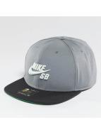 Nike SB Snapback Cap Icon grau