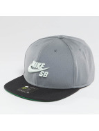 Nike SB Snapback Caps Icon harmaa