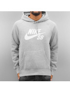 Nike SB Sweat à capuche Icon gris