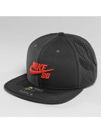 Nike SB Trucker Caps SB Performance grå
