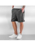 Nike Shorts Dry Training grau