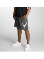 Nike Shorts Dry Training grau