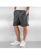 Nike shorts Dry Training grijs