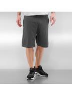 Nike Szorty Dri Fit Cotton szary