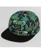 O'NEILL Snapback Caps Wilderness grøn