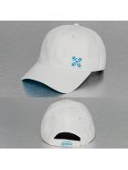 Oxbow Snapback Caps Cauva Velcro Back valkoinen