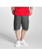 Pelle Pelle Shorts Basic Cargo grau