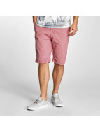Petrol Industries Short Chino rouge