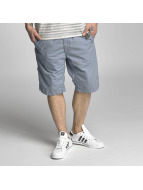 Petrol Industries Shorts Chino blau
