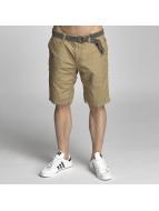 Petrol Industries Shorts Chino brun