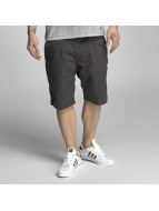 Petrol Industries Shorts Chino grau