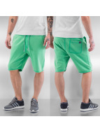Petrol Industries shorts Basic groen