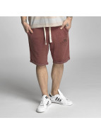 Petrol Industries Shortsit Sweat Shorts punainen