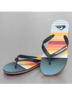 Quiksilver Sandales Molokai Everyday Stripe bleu