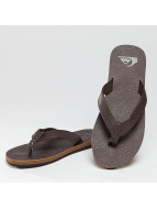 Quiksilver Sandals Molokai Nubuck brown