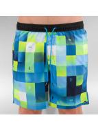 Quiksilver Short de bain Check Mark Volley 17 bleu