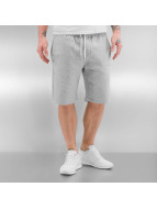 Quiksilver Short Everyday gris