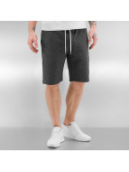 Quiksilver Shortsit Everyday harmaa