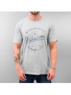 Quiksilver T-Shirt Rhino Chase grey