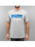 Quiksilver T-Shirt Jungle Box Classic gris