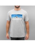 Quiksilver T-shirtar Jungle Box Classic grå