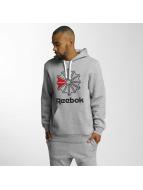 Reebok Hoodie F Star grey