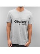 Reebok T-Shirt Archive Stripe grau
