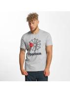 Reebok T-Shirts F GR gri