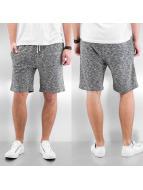 Reell Jeans Shorts Sweat Shorts grå