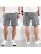 Reell Jeans Shorts Sweat Shorts grau
