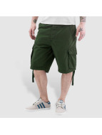 Reell Jeans shorts New groen