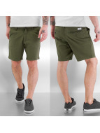 Reell Jeans Shorts Flex Chino olive