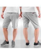 Rocawear Shorts Jogger Non Denim beige
