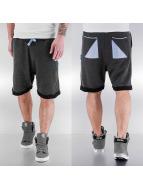 Shisha  Shorts Stoot gris
