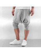 Sixth June Sweat Pant Harem grey