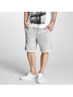 Solid Shorts Gibby grau