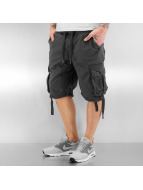 Southpole Shorts Broome gris