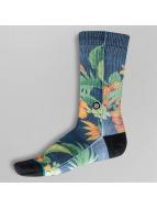 Stance Çoraplar Two Scoops renkli