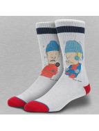 Stance Socken Blue Foundation Snot grau
