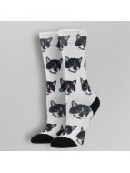 Stance Socken Blue Zombie Cat weiß