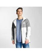 Supra Демисезонная куртка Dash серый
