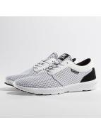Supra Sneaker Hammer Run bianco
