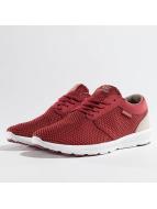 Supra Sneakers Hammer Run röd