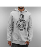 The Dudes Hoodies Russian Boxer gri