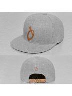 TrueSpin Snapback Cap ABC-O Wool gray