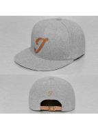 TrueSpin snapback cap ABC-I Wool grijs