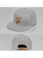 TrueSpin snapback cap ABC-J Wool grijs