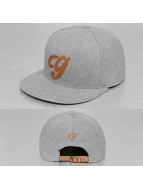 TrueSpin snapback cap ABC-Y Wool grijs
