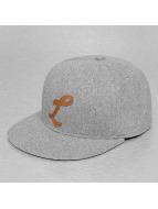 TrueSpin Snapback Caps ABC-L Wool grå